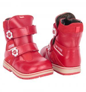 Ботинки , цвет: красный Bebetom
