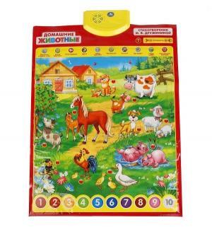 Плакат интерактивный  Домашние животные Умка