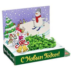 Набор для выращивания  Снеговик Удачи в Новом году Happy Plant